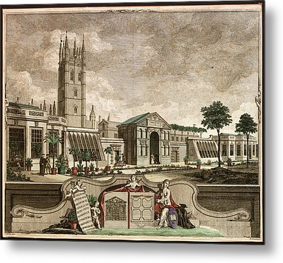 Botanic Garden Metal Print by Museum Of The History Of Science/oxford University Images