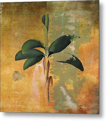 Botanical Banana Tree Metal Print by Kandy Hurley