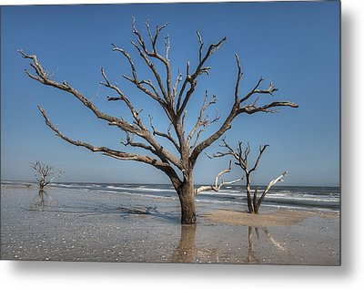 Botany Bay And Edisto Beach Metal Print