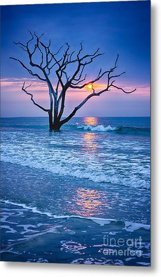 Botany Bay Sunrise 2 Metal Print by Carrie Cranwill