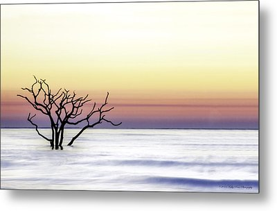 Botany Bay Sunrise Metal Print by Kathy Ponce
