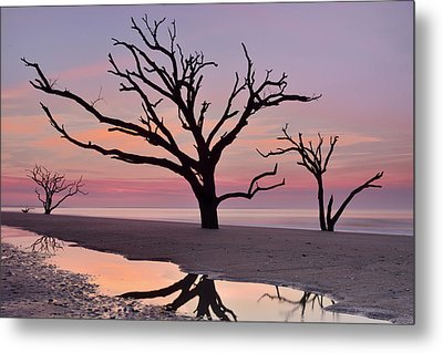 Botany Bay Trees Metal Print