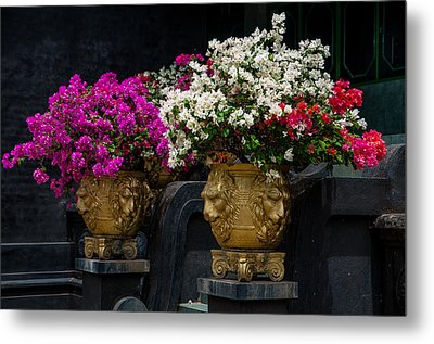 Bougainvillea At The Entrance Of Golden Temple In Dambulla  Metal Print by Jenny Rainbow