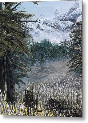 Boundless Partial Metal Print by Pheonix Creations