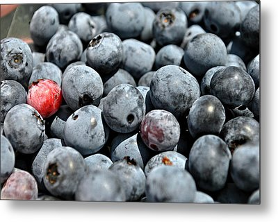 Metal Print featuring the photograph Bountiful Blueberries by Kelly Nowak