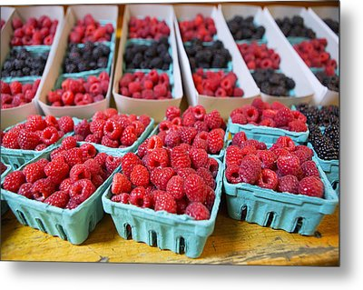 Bounty Of Berries Metal Print by Caitlyn  Grasso
