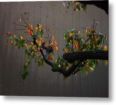 Bouquet From Autumn Leaves.three. Metal Print by Viktor Savchenko