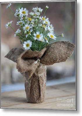 Bouquet Of Chamomile  Metal Print by Petko Pemaro