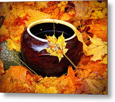 Metal Print featuring the photograph Bowl And Leaves by Rodney Lee Williams