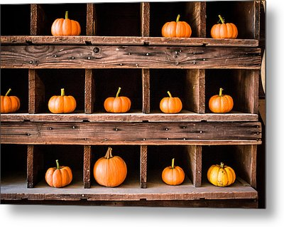 Boxed In Pumpkins Metal Print