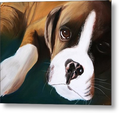 Boxer Metal Print by Michele Turney