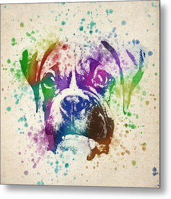 Boxer Splash Metal Print by Aged Pixel