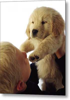 Boy Holding Puppy Up Metal Print by Ron Nickel