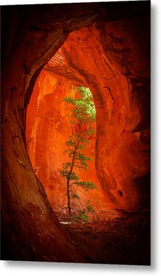 Boynton Canyon 04-343 Metal Print