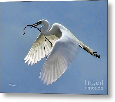 Branch Of Peace Metal Print by Jennie Breeze