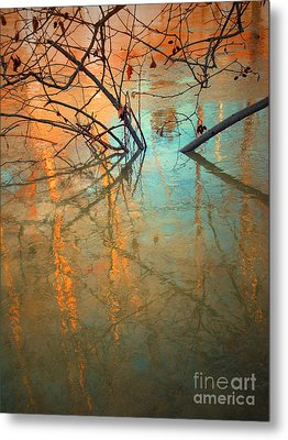 Branches And Ice Metal Print by Tara Turner
