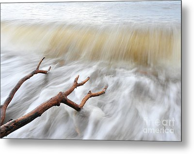 Metal Print featuring the photograph Branches In Water by Randi Grace Nilsberg