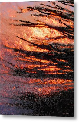 Metal Print featuring the photograph Branches Of Light by Sami Tiainen