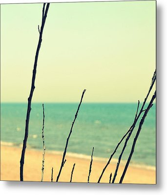 Branches On The Beach Metal Print by Michelle Calkins