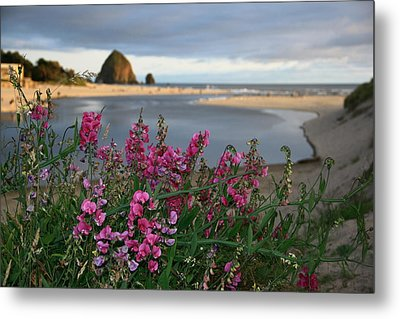 Breakers Point Oregon Metal Print