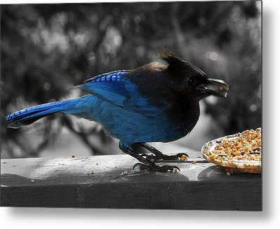 Breakfast On The Patio Metal Print