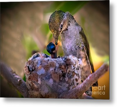 Breakfast Metal Print by Robert Bales