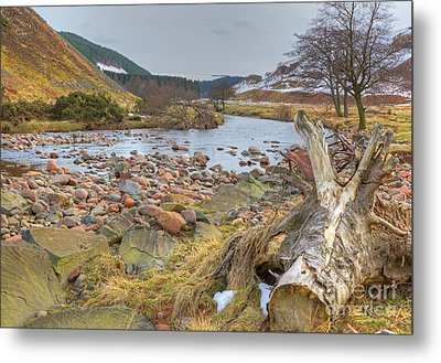 Breamish Valley Landscape Metal Print by David Birchall