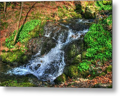 Metal Print featuring the photograph Breath Deeply by Doc Braham