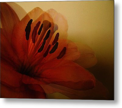 Breath Of The Lily Metal Print by Marianna Mills