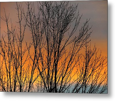 Breezeful Metal Print