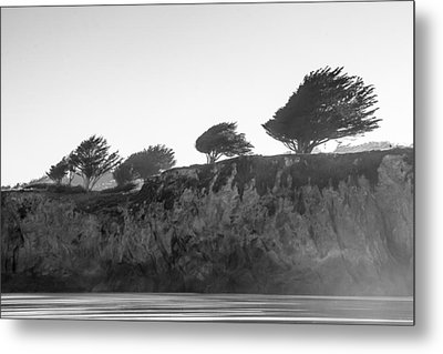 Metal Print featuring the photograph Breezy by Takeshi Okada