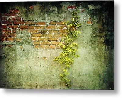 Brick Wall Metal Print by Linda Olsen