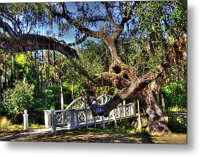 Bridge At Koreshan State Park - Estero Florida Metal Print by Timothy Lowry
