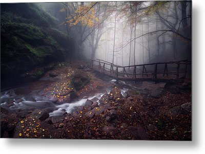 Bridge In Mystical Forest. Metal Print