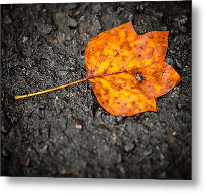 Bright Dark And Alone Metal Print by Melinda Ledsome