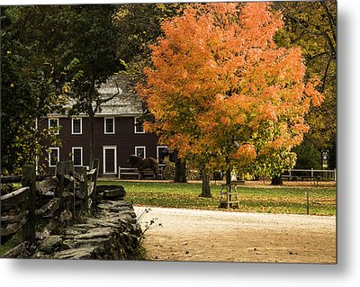 Metal Print featuring the photograph Bright Orange Autumn by Jeff Folger