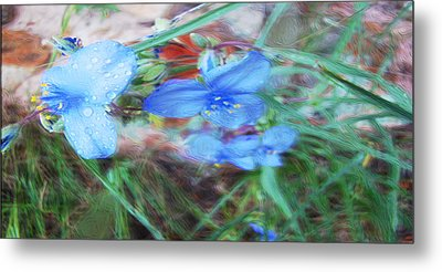 Metal Print featuring the photograph Brilliant Blue Flowers by Cathy Anderson