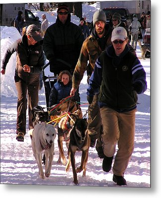 Bringing The Sled Up To The Line Metal Print by Feva  Fotos