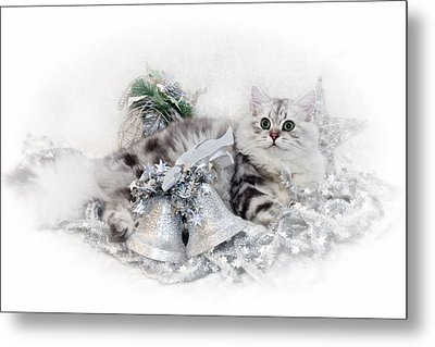 British Longhair Cat Christmas Time Metal Print by Melanie Viola