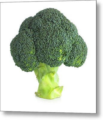 Broccoli Metal Print by Science Photo Library