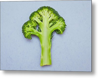 Broccoli Metal Print by Tom Gowanlock