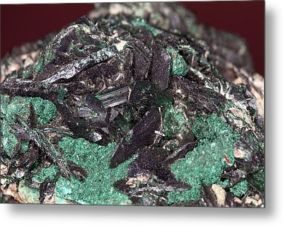 Brochantite Crystals Metal Print by Science Photo Library