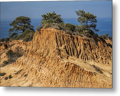 Metal Print featuring the photograph Broken Hill At Torrey Pines by Lee Kirchhevel