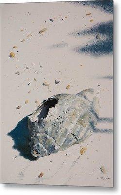 Broken Home Abandoned Metal Print by Christopher Reid