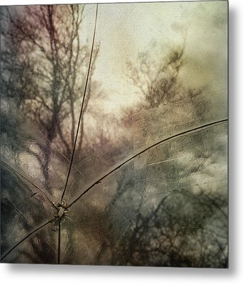 Metal Print featuring the photograph Broken Sky by Sally Banfill