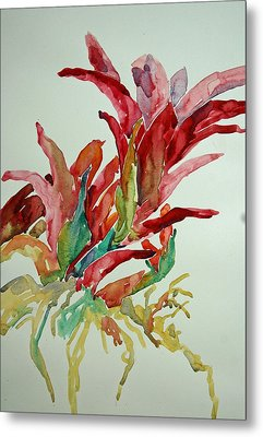 Bromeliad #2 Metal Print by Roger Parent