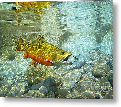 Brook Trout And Silver Doctor Metal Print by Paul Buggia