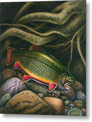 Brook Trout Lair Metal Print by JQ Licensing