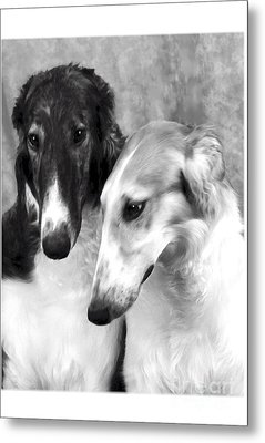 Brother And Sister Borzoi  Metal Print by Maxine Bochnia