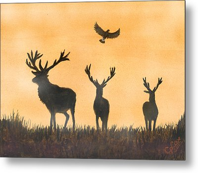 Brothers In Arms And The Fly Past Salute Metal Print